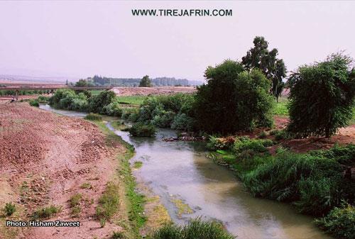 منظر لنهر عفرين / مدينة عفرين
